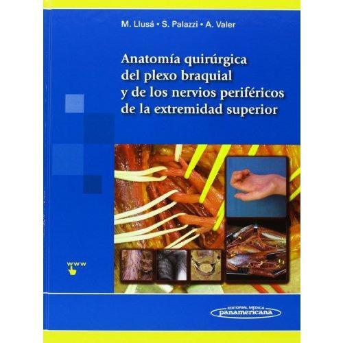 Anatomia Quirurgica del plexo braquial y nervios perifericos de la extremidad superior. Incluye sitio web